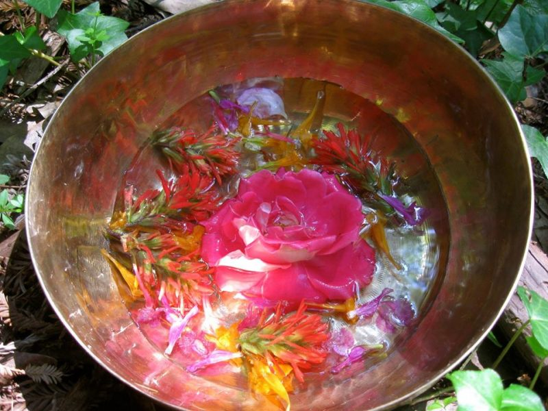 singing bowl filled with flowers and fresh water