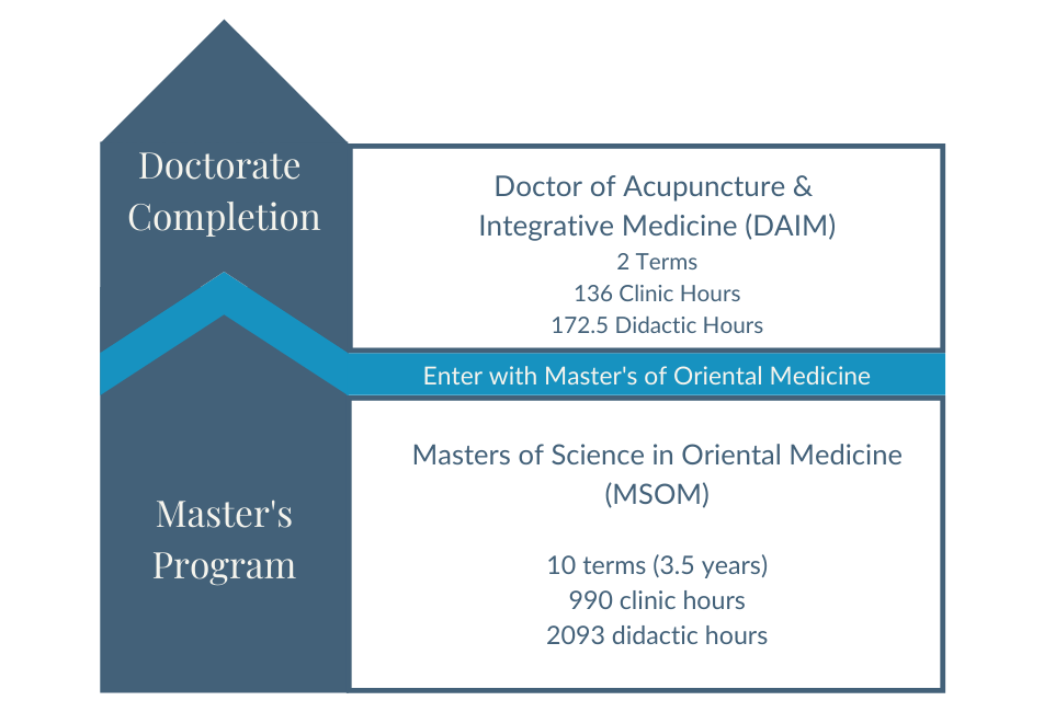Doctorate Course Path Graphic